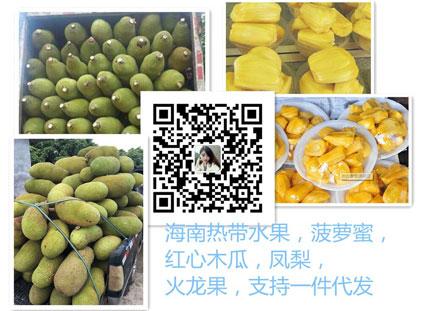 微信水果货源 产地自销 免费代理 一件代发 包邮包售后