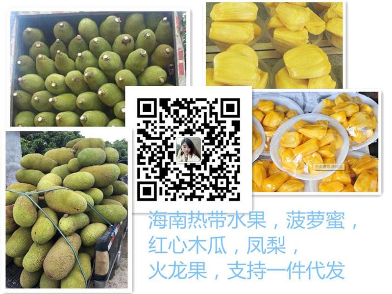 微信水果货源产地自销免费代理