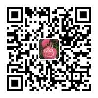 新鲜应季苹果 云南昭通红富士丑苹果冰糖心